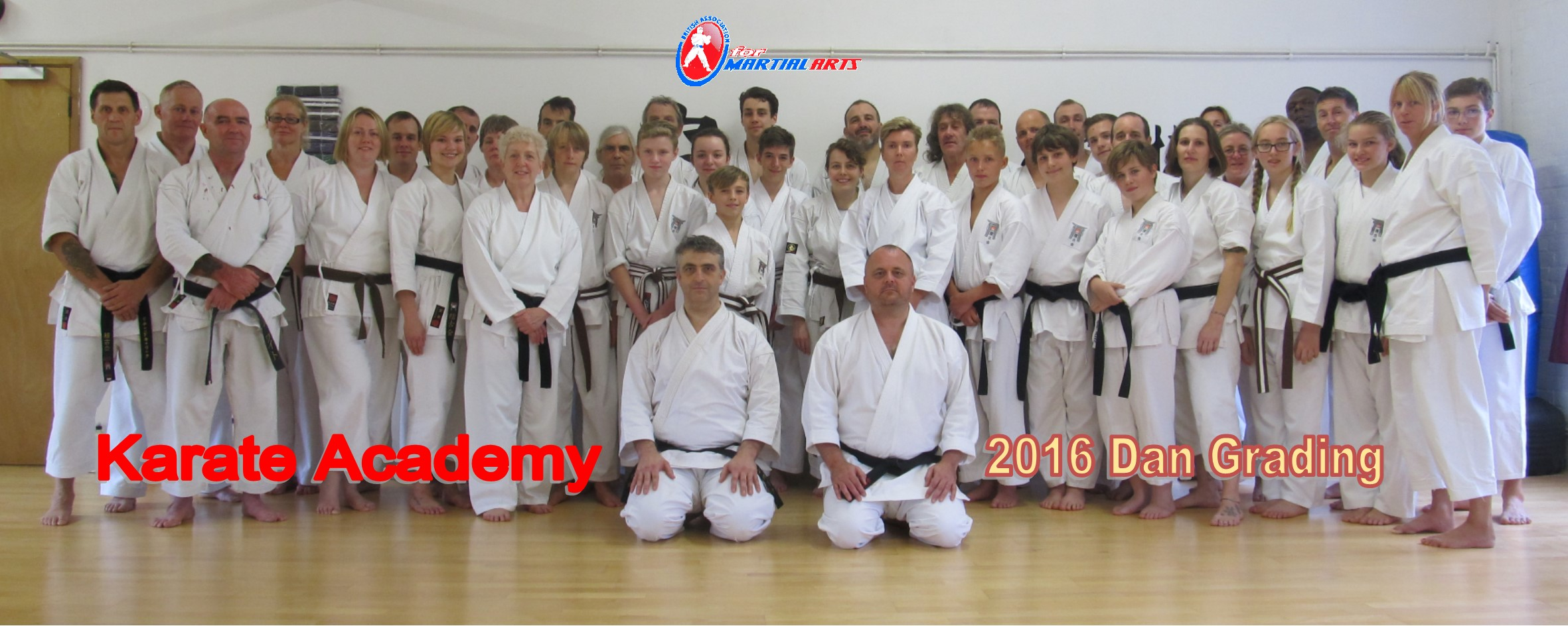 Brown Belts and Black Belts 2016
